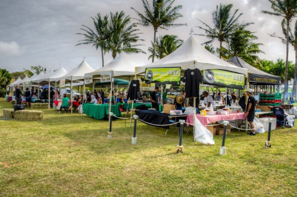 Maui County Agricultural Festival